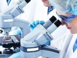 laboratorijoje-5238188006f93-79255b7de6e6b7d70bb1e077129f5794.jpg